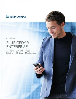 2018-4-SB-Blue-Cedar-Enterprise-thumbnail